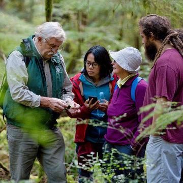 Discover Cortes: Nature Adventures