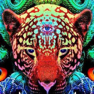Jaguar Odyssey – 3 Ayahuasca Ceremonies – December 2 – 6