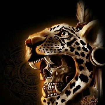 Jaguar Odyssey (Amazon) and Chavin Renaissance (Andean Highlands) 14 Days, June 17 – July 1