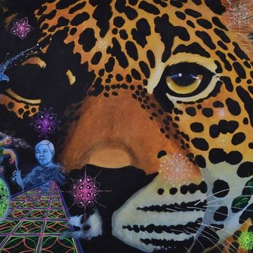 Jaguar Odyssey – 3 Ayahuasca Ceremonies – April 15 – 19