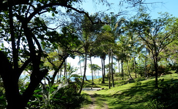Beachfront Kundalini and Gong Yoga in Nosara, Costa Rica