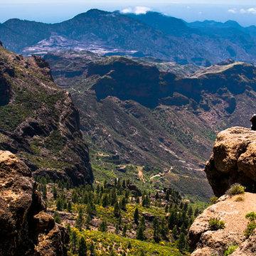 Ayahuasca Retreats - Gran Canaria Canary Islands, Spain (ongoing)
