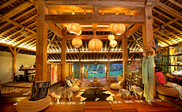 Movement Is Medicine Bali Yoga Retreat