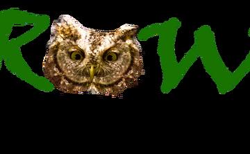 GROWE WILDERNESS SUMMER CAMP 2019