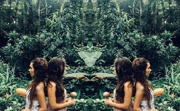 Art Therapy & Ayahuasca Retreat