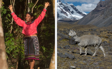 Reconnection: Amazon and Andes Medicine Retreat (part I and part II)