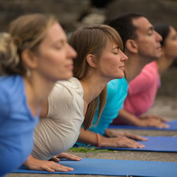 Yoga of Recovery 7-day Immersion & Training