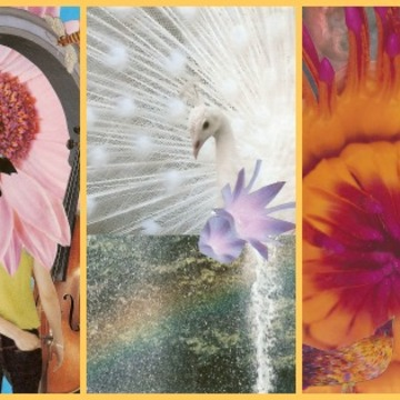 Spiritual Crafting, based upon SoulCollage® February 2019