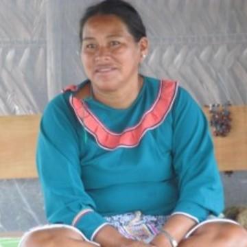 Celia Panduru Huaita