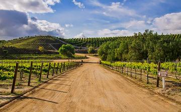 Southern California Winery Retreat 2019