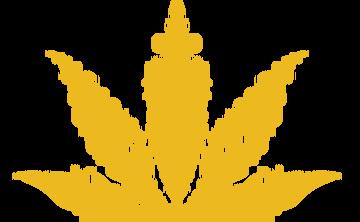 Journey to Spiritual Awakening with Cannabis