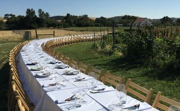 Farm to Table Wellness Festival