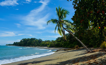 Yoga & Meditation Retreat in Costa Rica