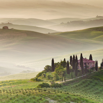 Yoga, Plant-Food & Wine in Tuscany