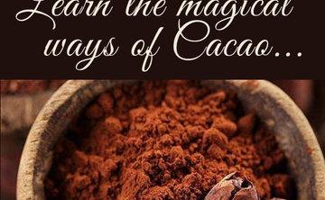 Cacao facilitator training