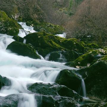 8 Days Nature & Yoga Retreat in Montenegro