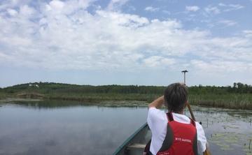 Summer Solstice Yoga & Canoe  Day Retreat