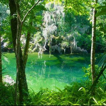 Self Healing & Self Discovery Retreat