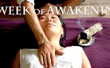 A Week of Awakening - Ayahuasca, Massage, and Yoga retreat