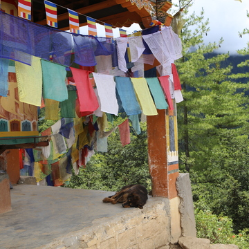 14 Day Pilgrimage Journey to Nepal and Bhutan