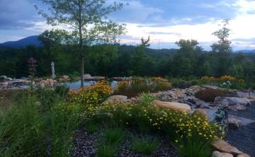 Renew & Restore Spring Yoga Retreat with Susan Mittleman
