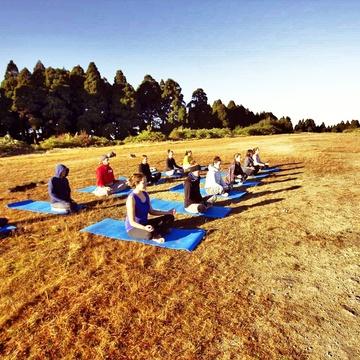 Himalayan Yoga Bliss & Wellness center
