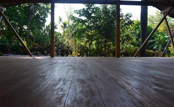 Costa Rican Chen Style Tai Chi Retreat