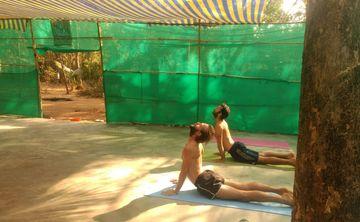 7 Days Advanced Traditional Meditation, Pranayama, and Hatha Yoga Retreat in Karnataka, India