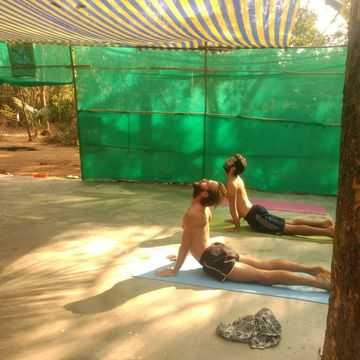 7 Days Advanced Traditional Meditation, Pranayama, and Hatha Yoga Retreat in Karnataka, India