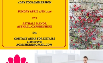 One Day Yoga Immersion