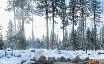 Sierra Hot Springs New Year 2020