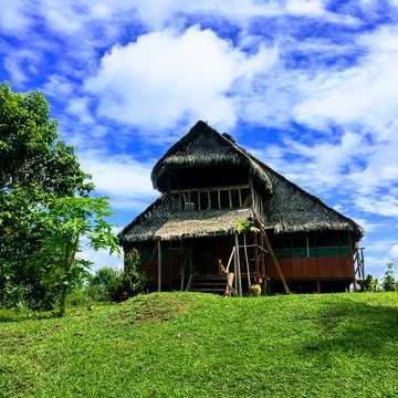 Dream Jungle Lodge