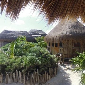 4 Day Ayahuasca Retreat