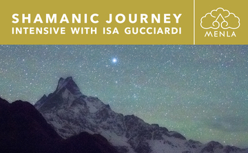 Shamanic Journey Intensive