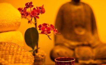 Lotus Borne Perception: Awareness Teachings of Tibetan Buddhism and Continuum