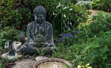 Mindfulness as a Wisdom Practice
