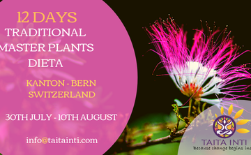 12 DAYS TRADITIONAL MASTER PLANTS DIETA