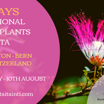 12 DAYS TRADITIONAL MASTER PLANTS DIETA