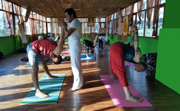 200 Hour Yoga Teacher Training in Rishikesh (April 2019)