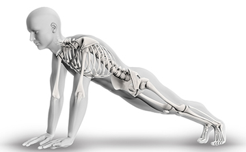 Midweek Seminar: Yoga for Strong Bones