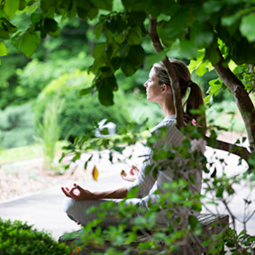 Summer Silent Retreat: Finding Peace and Contentment in Daily Life