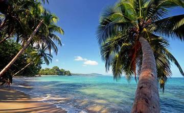 Costa Rica: Yoga and Wellness Retreat (co-ed)