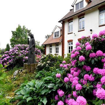 Inner-journey Netherlands