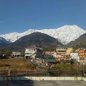 8 Days Juice cleanse Detox, Meditation and Yoga Retreat in Himalaya, India