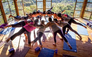RYT-200hr Kula Collective Elemental Flow Yoga Teacher Training
