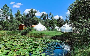 3 day 2 Night  Semi Private Ayahuasca Ceremony 10-14 people max  Oct. 11-13