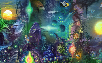 3 day 2 Night  Semi Private Ayahuasca Ceremony 10-14 people max  Aug. 2-4