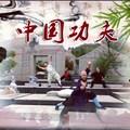 Taizu Shaolin Kung Fu International School