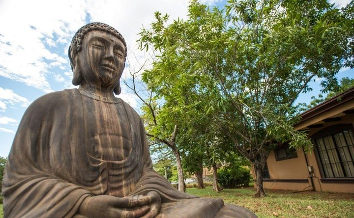 Preparing for my first experience with Ayahuasca: Rythmia Life Advancement Center
