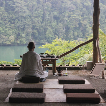 Forest Retreat and Shamanic Diet
